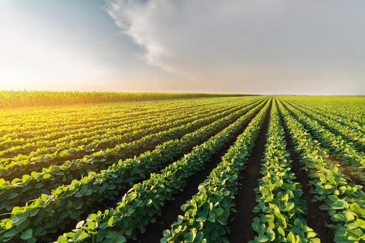 Agrarisch makelaar over grond als bedrijfsmiddel en belegging